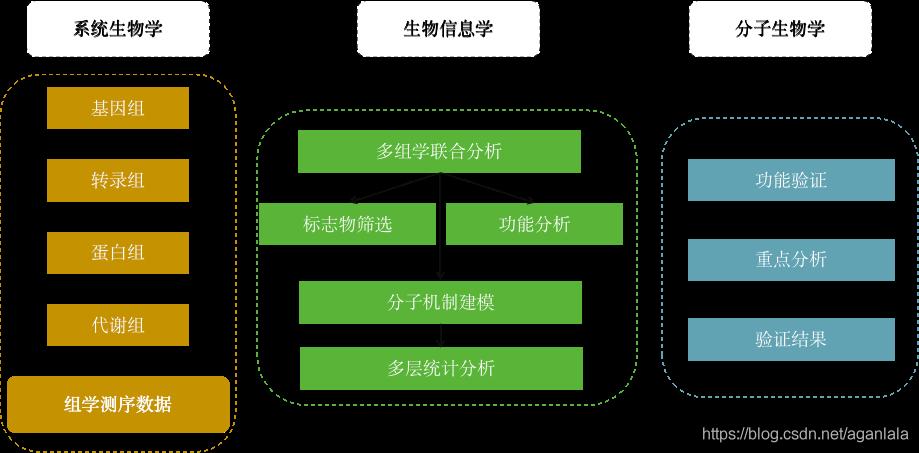 多组学联合分析整体框架及技术流程