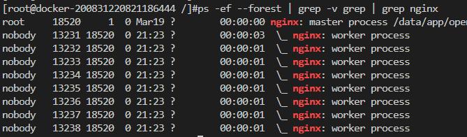 nginx1-master与worker