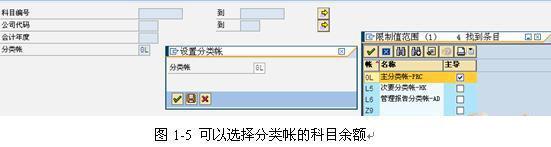 **SAP License:集团化企业多准则多报告的实现 图6**