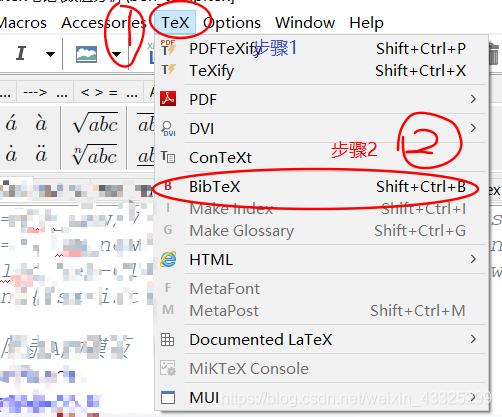 BibTex编译选择