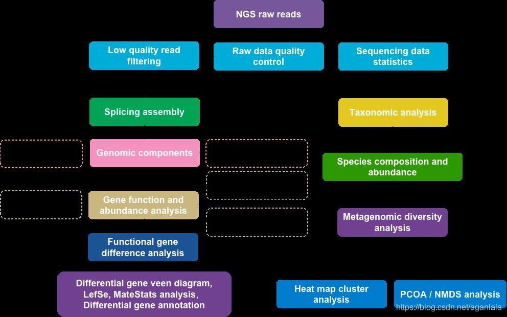 宏基因组分析流程
