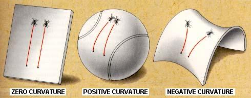 生活在二维球面的蚂蚁