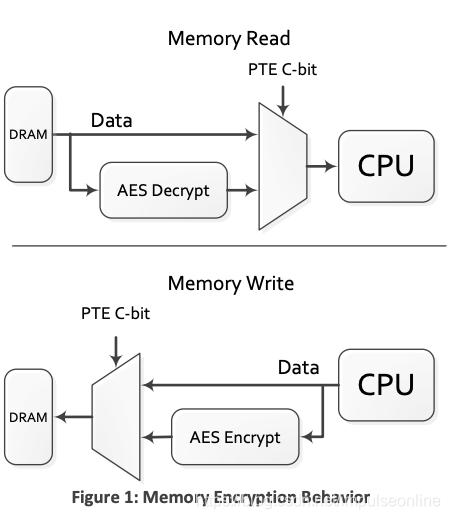 (图片来自:AMD Memory Encryption white paper)
