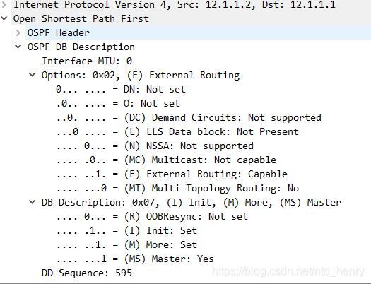 OSPF DD报文