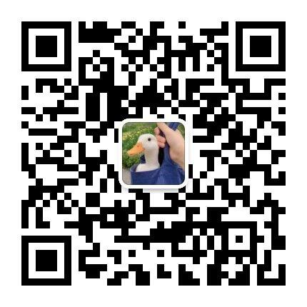 2021092213285765.jpg