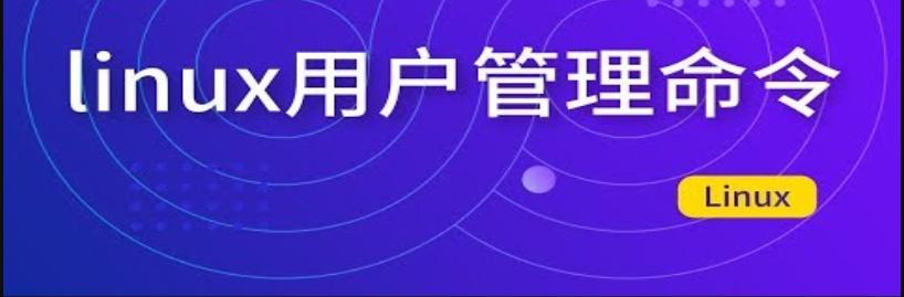 linux 用户管理篇(内容超详细,值得收藏)_涤生手记