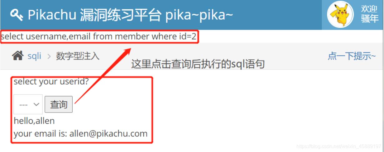 2020小迪培训 pikachu漏洞简易演示(第11天)