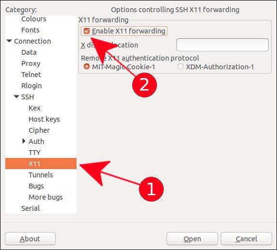 X11 Forwarding option