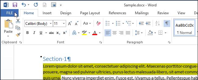 07_clicking_file_tab