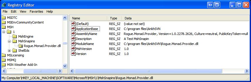 注册表编辑器Monad 1