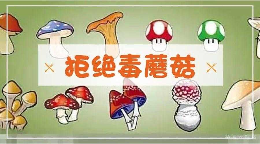 https://bbs-img.huaweicloud.com/blogs/img/1604487327238044846.jpeg