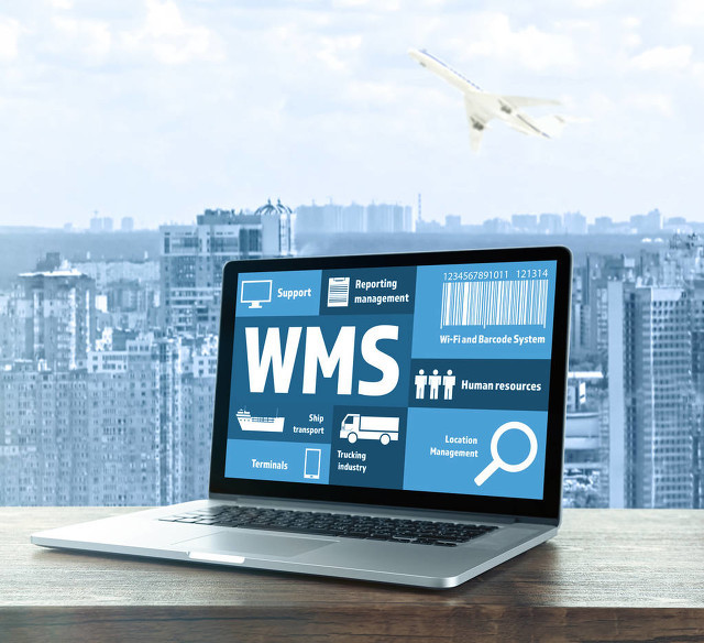 WMS系统