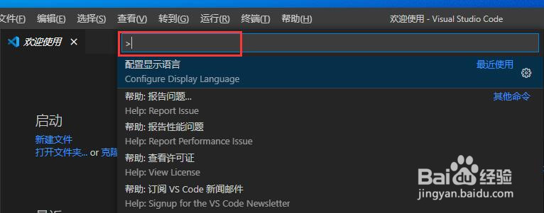 VS Code软件怎么设置成英文
