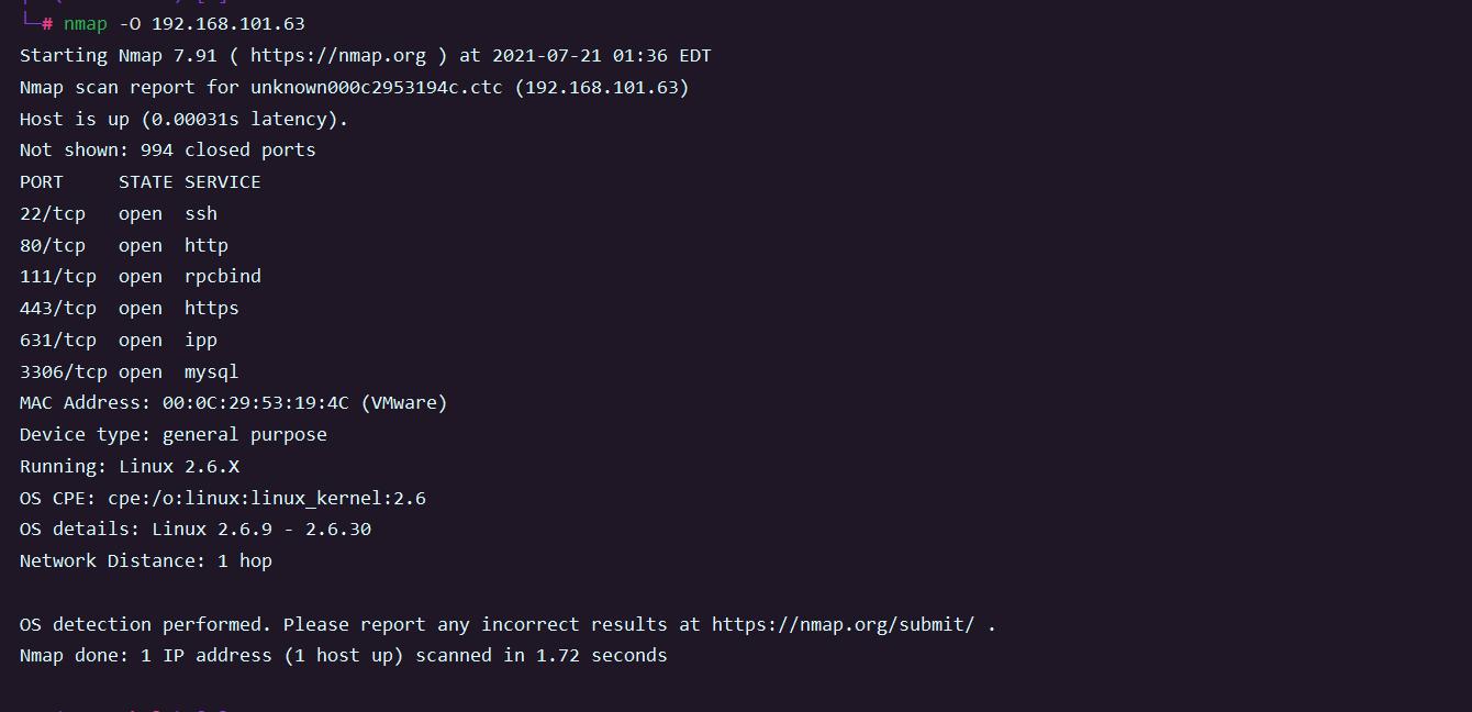 kali对未知web server透测试1