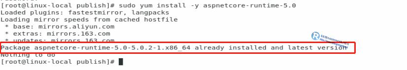 aspnetcore-runtime