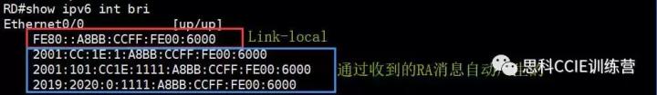 3c3b0db33b74dcaefd5307e5e70cc50a.png