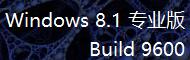 Win8.1 专业版