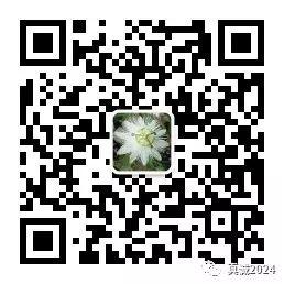 3f7d4d9637094e0cf6a41bfb11fcf73e.png