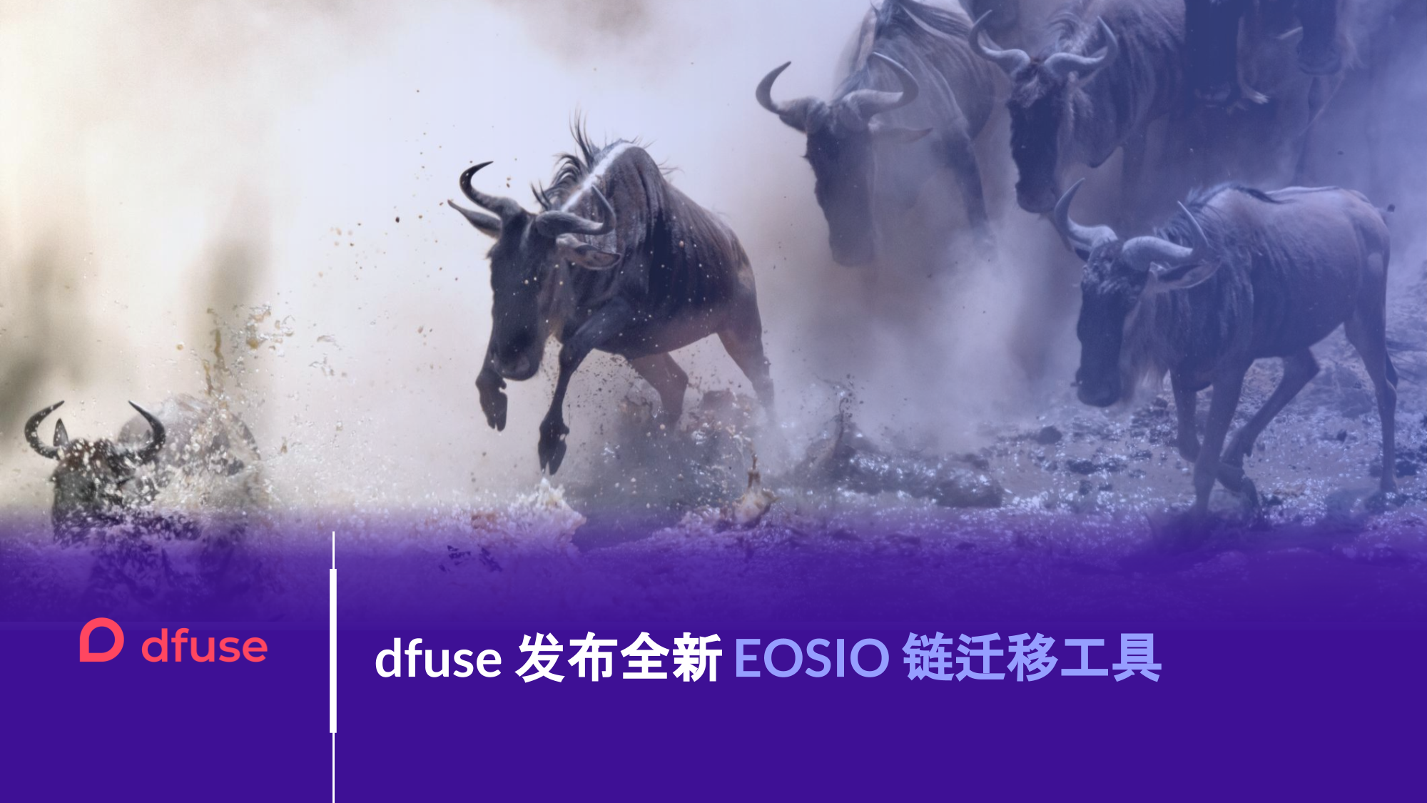 dfuse 发布全新 EOSIO 链迁移工具