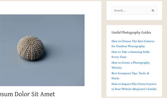 Featured posts in WordPress sidebar text widget