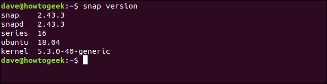 """The """"snap version"""" command in a terminal window."""