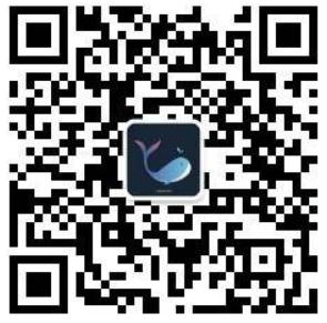image-20201119112159065