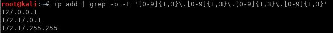 Print Interfaces IP Addresses