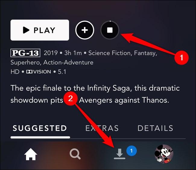 Disney+ App Select Downloads Tab