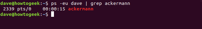 ps piped through grep in a terminal window