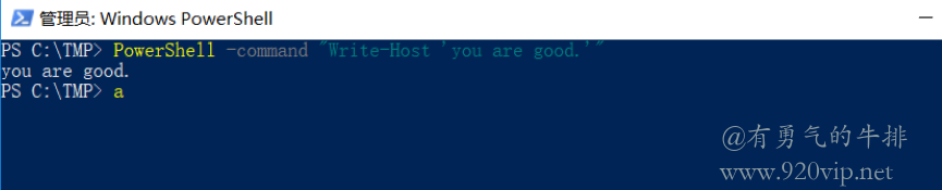 Windows PowerShell使用 -command 命令参数