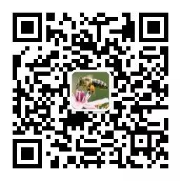 d05ca32e16797b72686431c0056c7c32.png