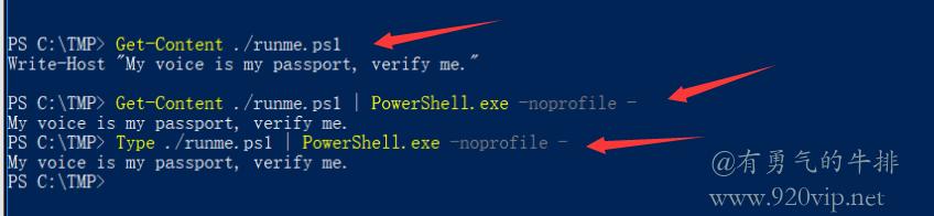 Windows PowerShell从文件读入脚本 Pipe到PowerShell的标准输入