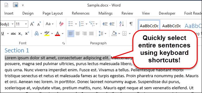 00_lead_image_selecting_sentences