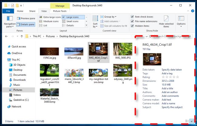 Example of Details Pane in Windows 10 File Explorer