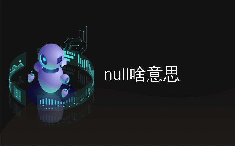 null啥意思