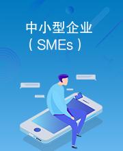 中小型企业(SMEs)